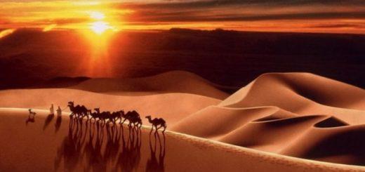 Мус'аб ибн 'Умайр — сподвижник Пророка