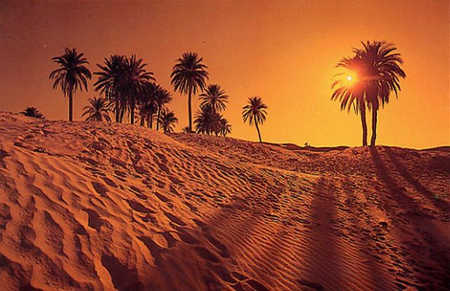 Поездка Пророка Мухаммада в Таиф