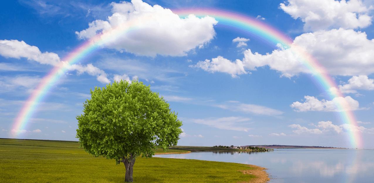 Как были созданы Богом Небеса и земли