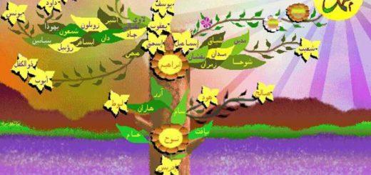 Что присуще Пророкам и от чего они ограждены